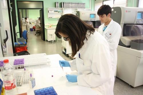 Estudiante de prácticas en Laboratorio verano 2014